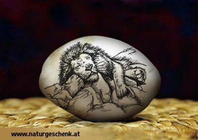 Natur Flusskiesel Löwe