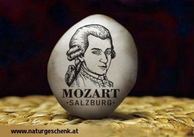 Salzburg Mozart Flusskiesel