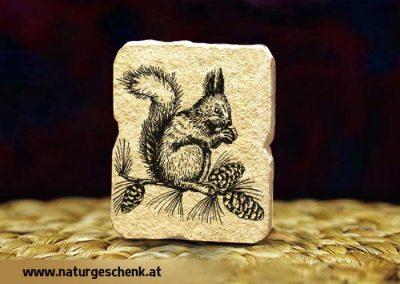 Steinmagnet Eihörnchen
